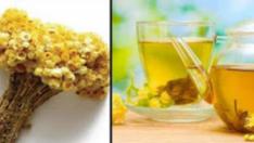 Yılların Çileli Hastalığına ve Bir Çok Rahatsızlığa Son Veren Bitki