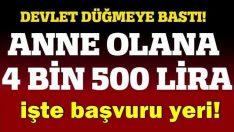 Devletten Anne Olana Tam 4 bin 500 lira