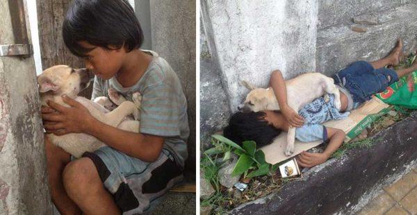 Sokakta Yalnız Yaşamamak İçin Köpek Sahiplendi – Arkadaşlıkları Görenleri Duygulandırıyor