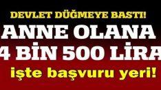 Devletten anne olana 4 bin 500 lira