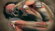Magnezyum Eksikliğine Bağlı Oluşan 56 Sağlık Problemi