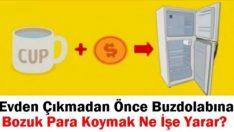 Uzun Süre Evde Olamayacaksanız Buzdolabında Bozuk Para Bırakın