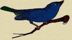 Mavi kuş testi ile kişiliğinizi test edin… Şoke olmaya hazır mısınız?