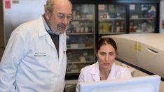Kemoterapisiz kanser tedavisi insanlarda denenecek! Hayvanlı testler yüzde 97 başarılı oldu