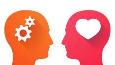Bu 11 Özellikten 6'sı Sizde de Varsa Duygusal Zekanız Yüksek Demektir Bakalım Sizin Duygusal Zekanız Ne Kadar Yüksek Haydi Test Edelim
