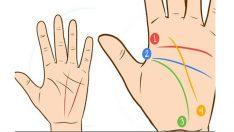 Elinizdeki Çizgilerin Anlamını Biliyor musunuz? Hayatınız Ve Kaderinizle İlgili Sırları Öğrenin