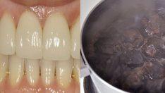 Doğal Diş Temizleme Yöntemi