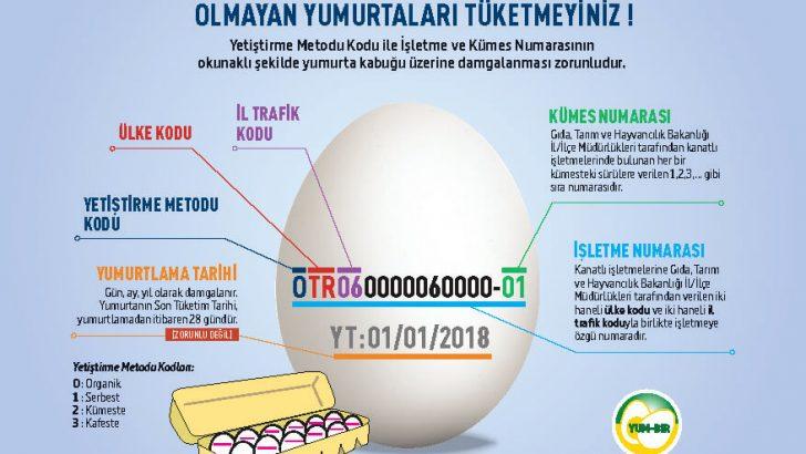 Yumurtanızın Üzerindeki Koddan Hangi İlden Geldiğini Bile Öğrenebileceğinizi Biliyor Muydunuz?